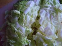 Stir-fried vegetarian cabbage